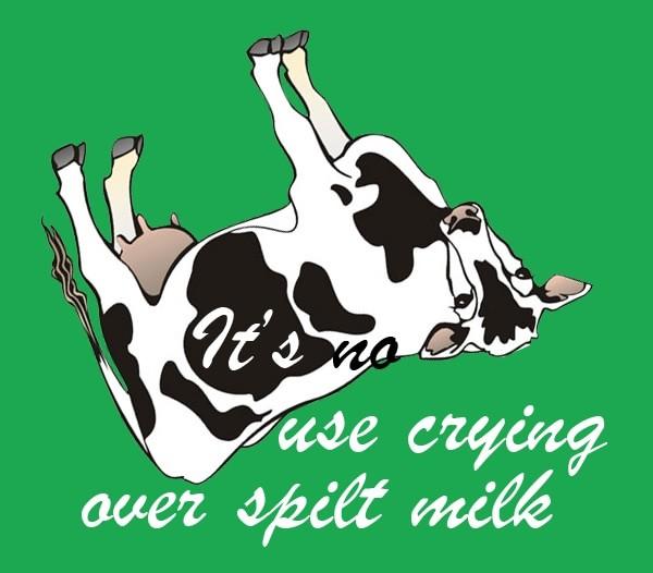 No use crying over spilt milk essay help
