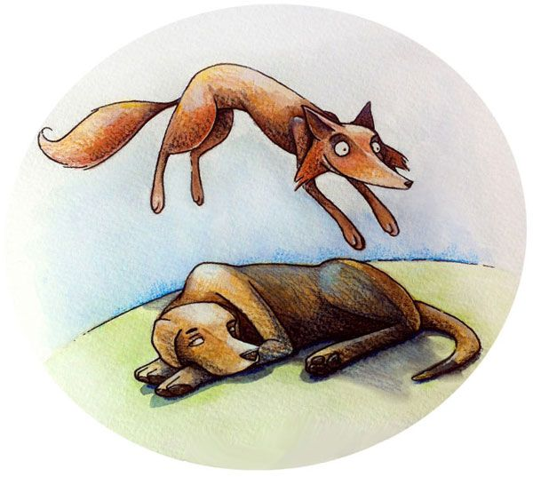 Английская панграмма The quick brown fox jumps over the lazy dog